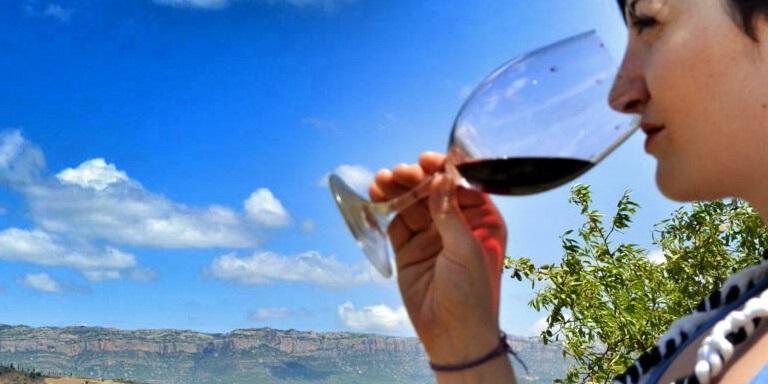 cata de vins Priorat per als matiners Devinssi